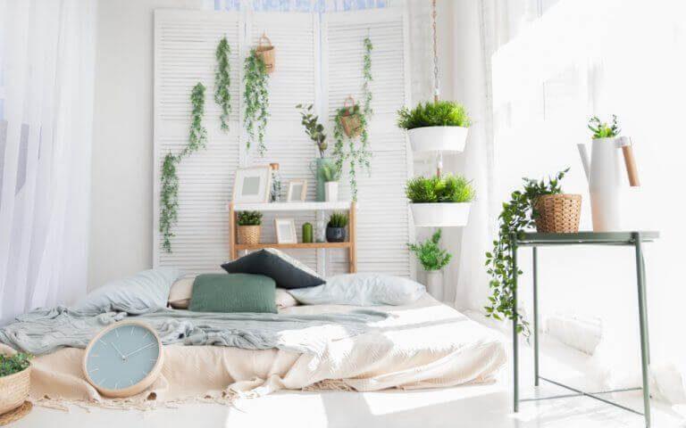 cuarto con plantas para dormir